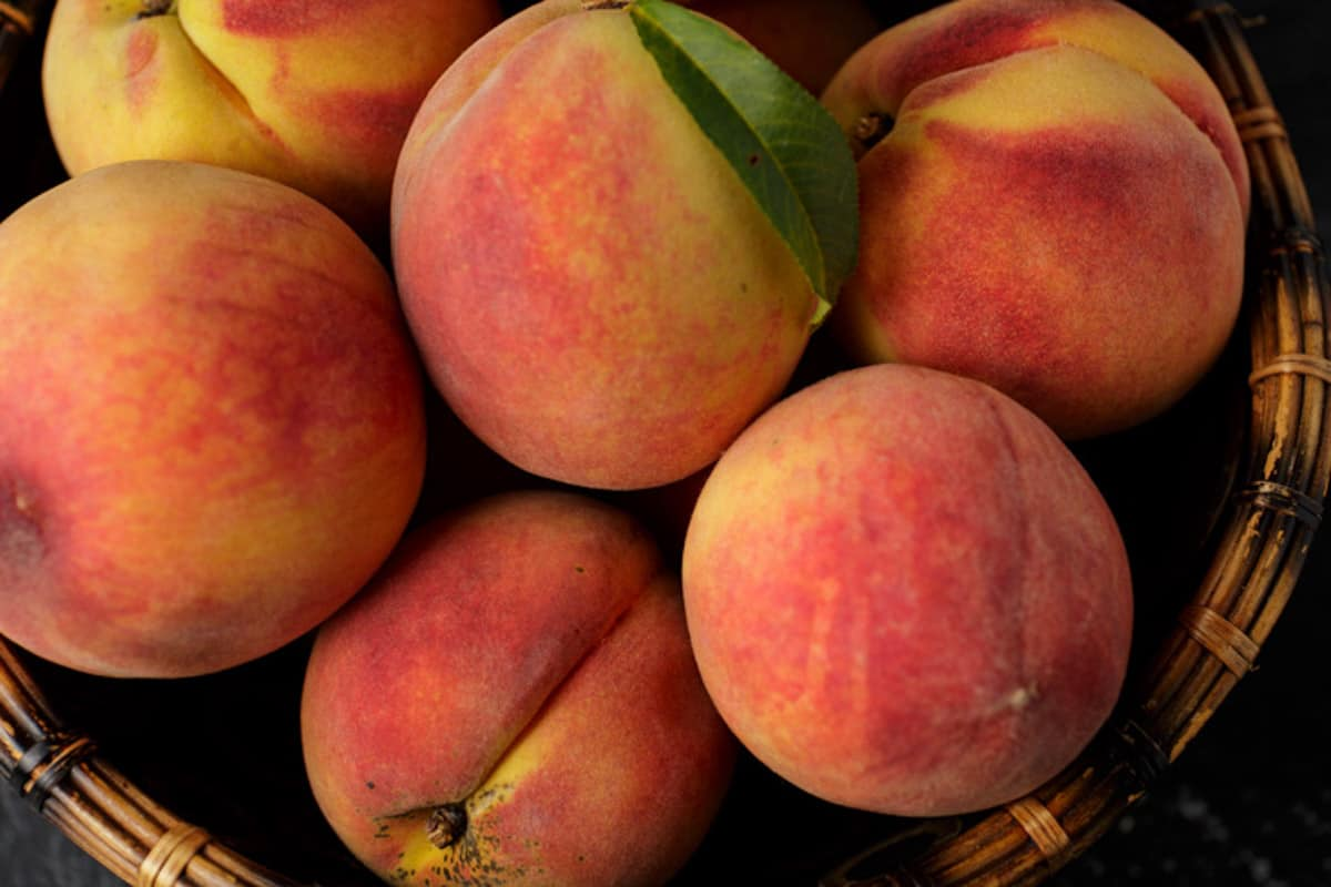 A bowl of fresh picked peaches.