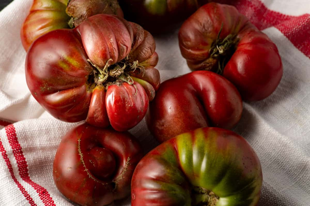 A group of heirloom tomatoes on a towel.
