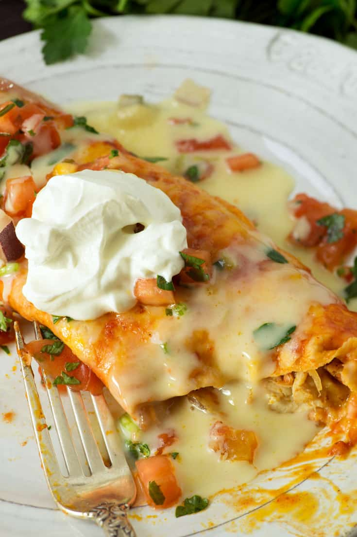 Chicken Enchilada with a fork