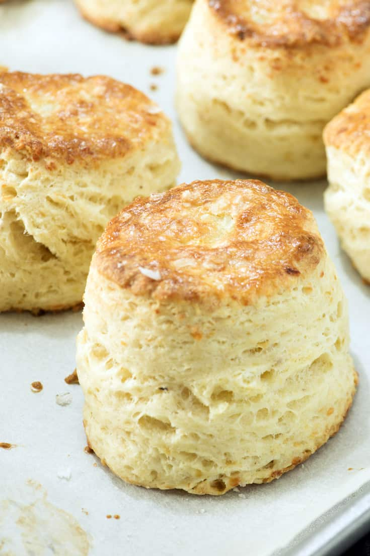 A plain biscuit on a baking sheet