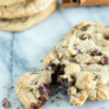 A single chocolate chip cookie with browned butter