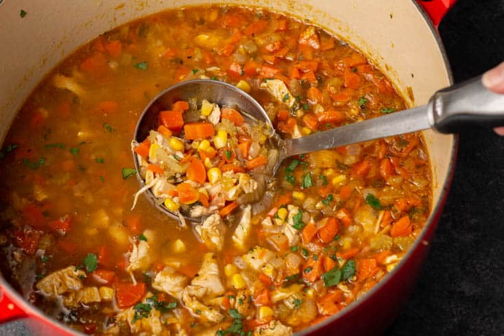 A dutch oven of chicken soup