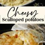 A spoon full of cheesy scalloped potatoes