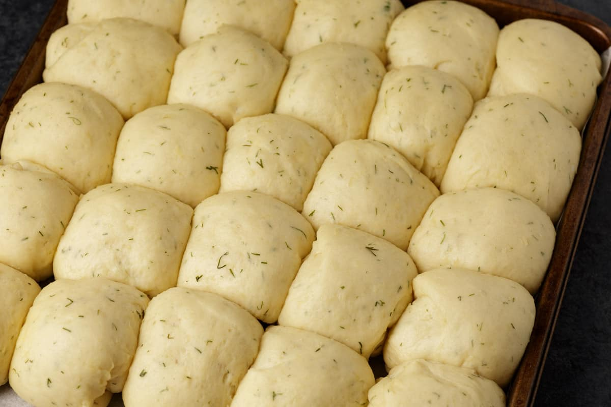 A baking pan of dill rolls before they have been cooked