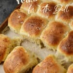 A batch of yeast rolls with dill and gruyere on parchment paper.
