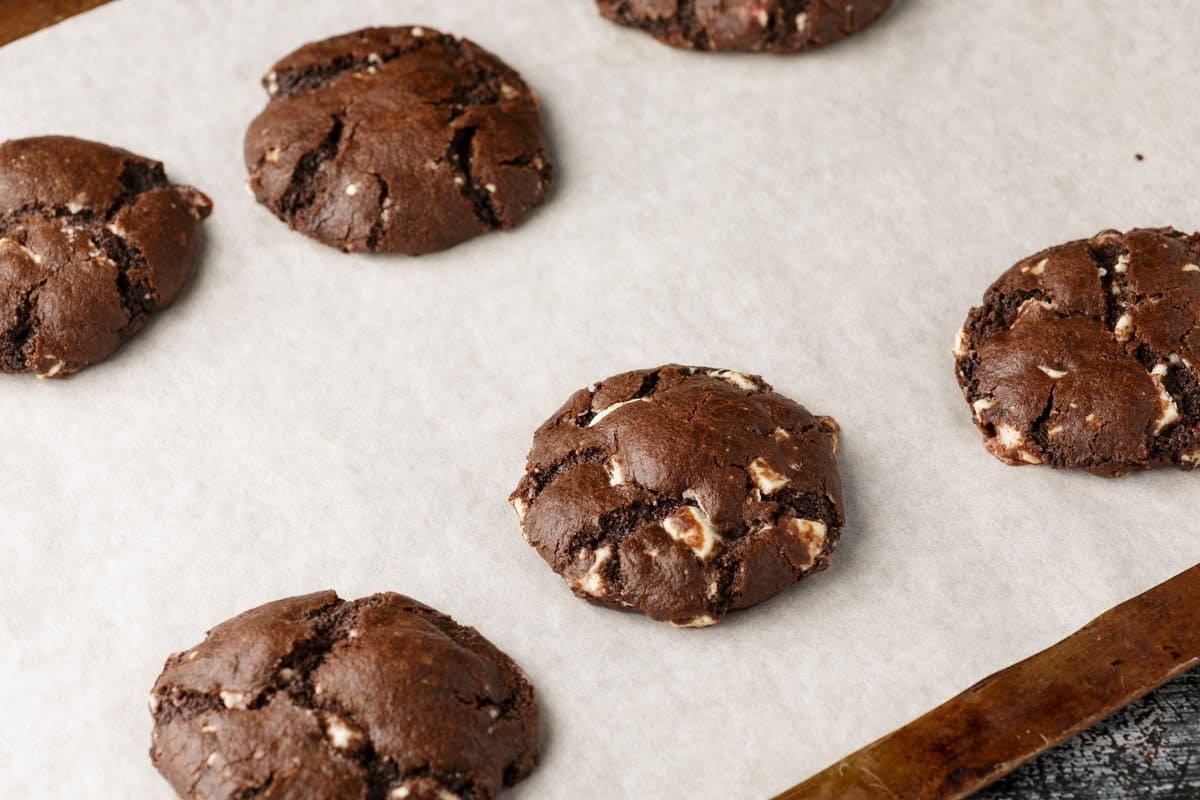Chocolate cookies on a baking sheet
