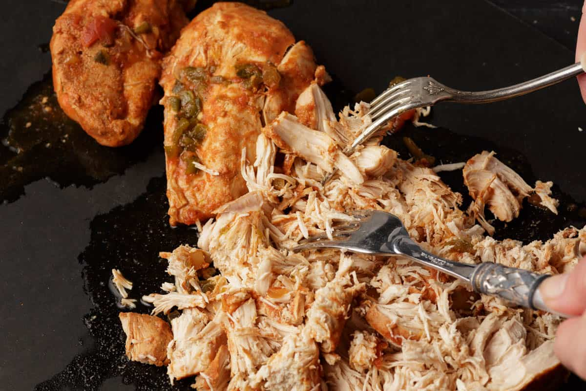 Chicken breasts being shredded with a fork