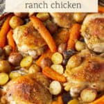 Chicken coated with ranch dressing with vegetables