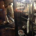 The kitchen at Bacon Brothers