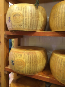 Cheese in Bologna